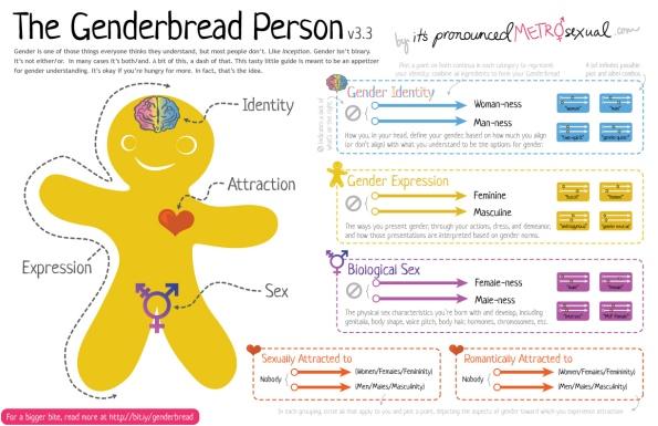 Genderbread-Person-3.3.jpg